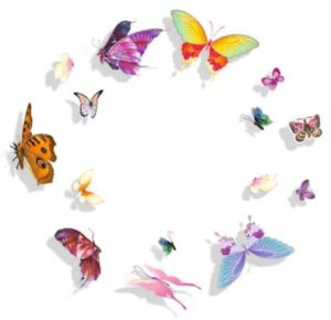фотопечать бабочки